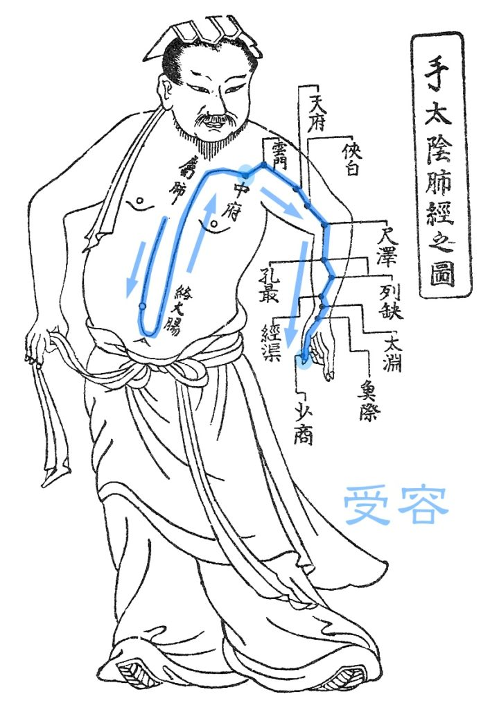 11/24土-25日 東洋医学カラーケア「肺経・大腸経」「胃経・脾経」